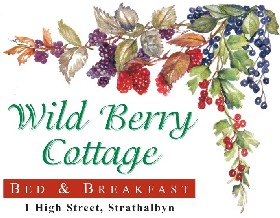 Wild Berry Cottage - Accommodation Resorts