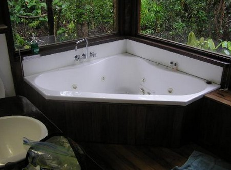 The Canopy Rainforest Tree Houses and Wildlife Sanctuary - Accommodation Resorts