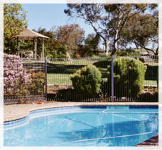 BEECHWORTH HEIGHTS - Accommodation Resorts