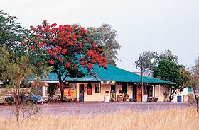 Wauchope Hotel and Roadhouse - Accommodation Resorts