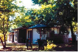 Forest Lodge - Accommodation Resorts