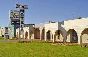 Citrus Motel - Accommodation Resorts