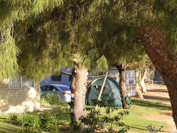 Barmera North Lake Caravan Park - Accommodation Resorts