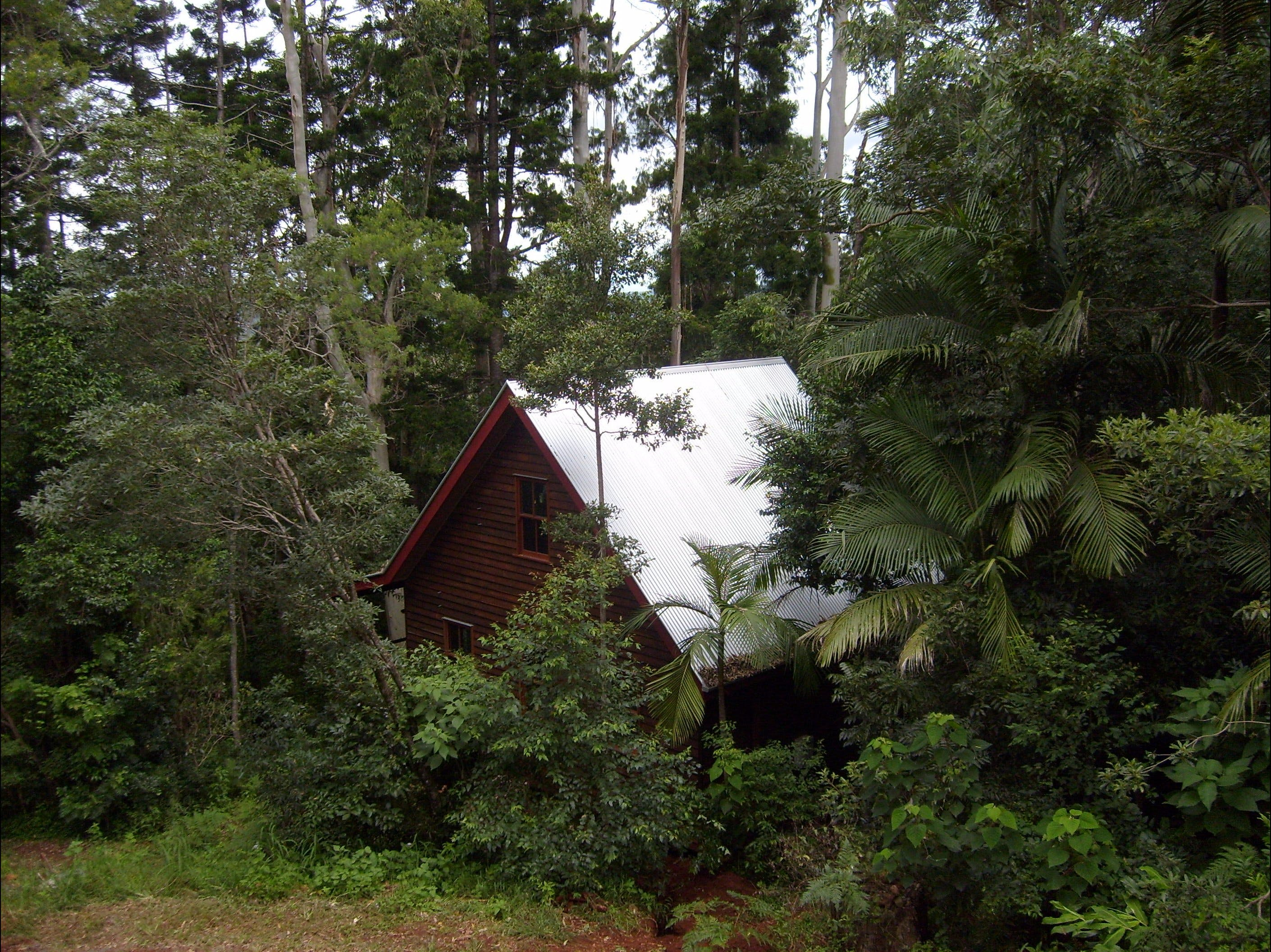 Turkeys Nest Rainforest Cottages Mt Glorious - Accommodation Resorts