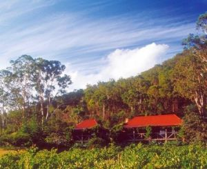 Cedar Creek Cottages - Accommodation Resorts