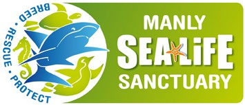 Manly SEA LIFE Sanctuary - Accommodation Resorts