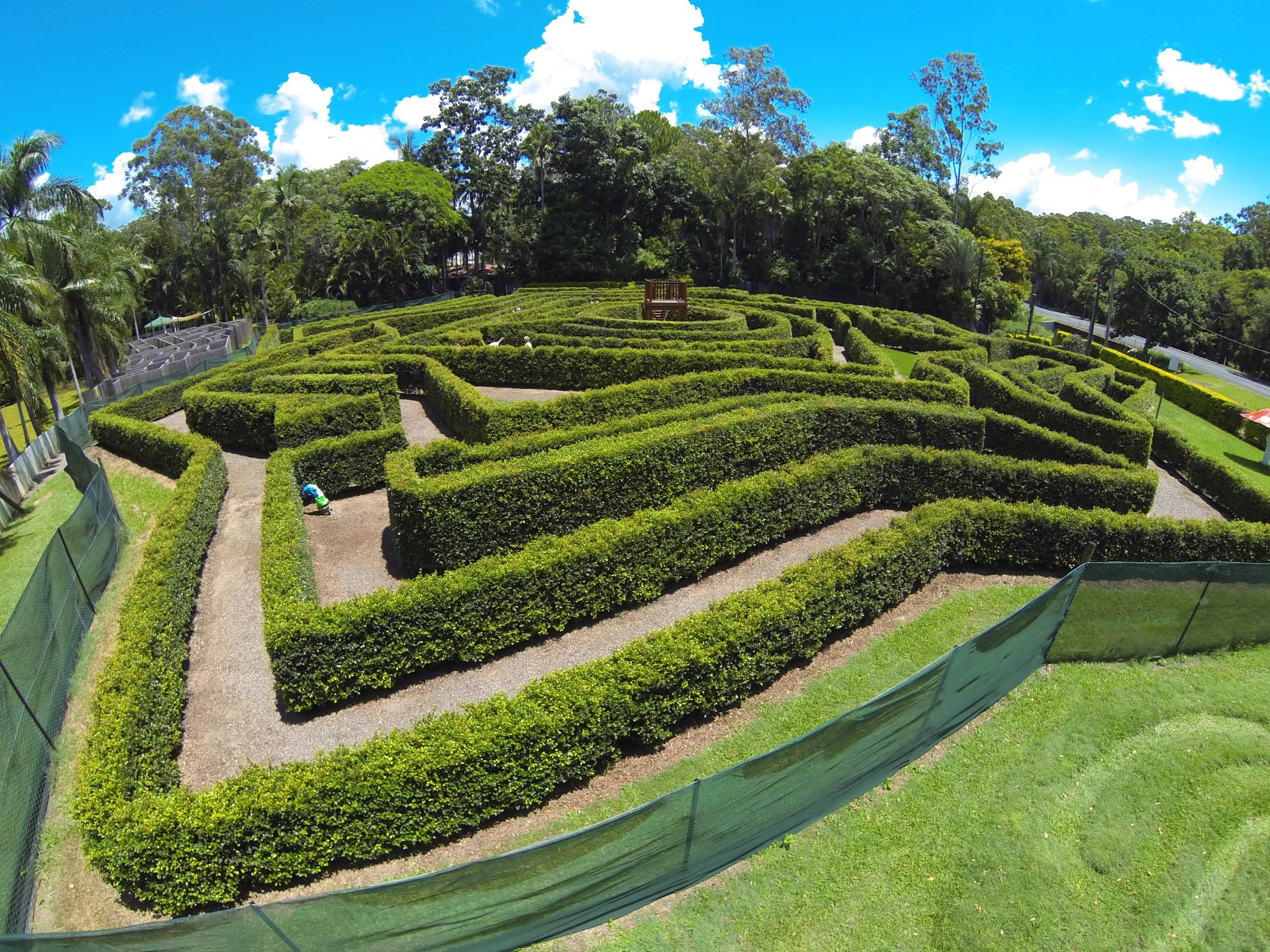 Bellingham Maze - Accommodation Resorts