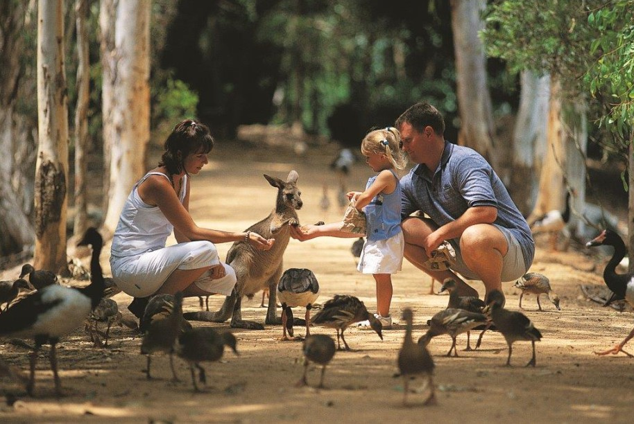Billabong Sanctuary - Accommodation Resorts