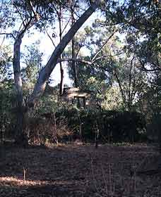 Ghost House Walk Trail Yanchep National Park - Accommodation Resorts