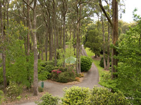 Mount Lofty Botanic Garden - Accommodation Resorts