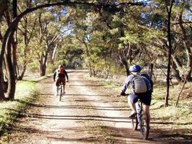 Bike About Mountain Bike Tours And Hire - Accommodation Resorts