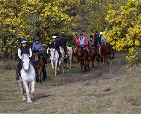 Burnelee Excursions on Horseback - Accommodation Resorts