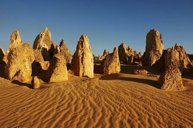Pinnacles Day Trip from Perth Including Yanchep National Park - Accommodation Resorts