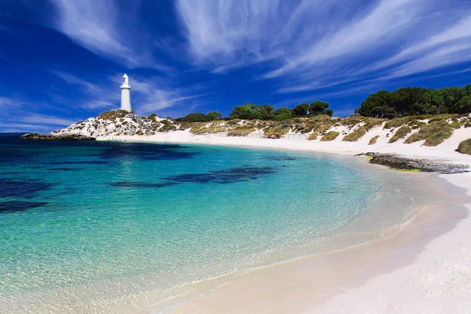 Rottnest Island Grand Tour Including Lunch and Historical Train Ride - Accommodation Resorts