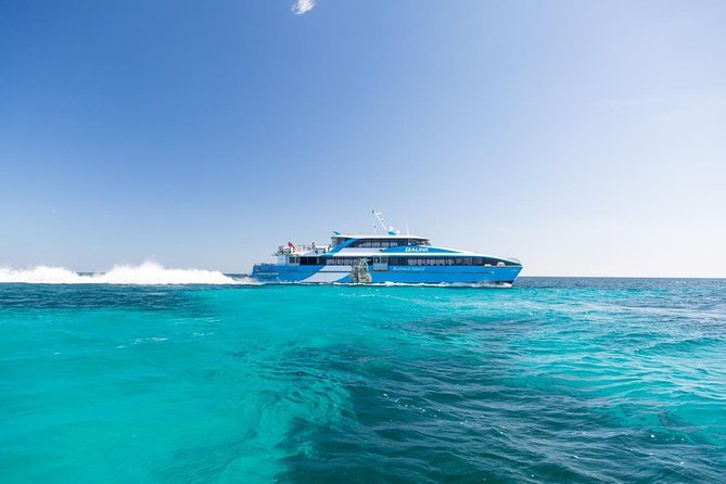 Fremantle to Rottnest Island Roundtrip Ferry Ticket - Accommodation Resorts