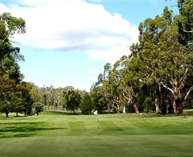 Cooma Golf Club - Accommodation Resorts
