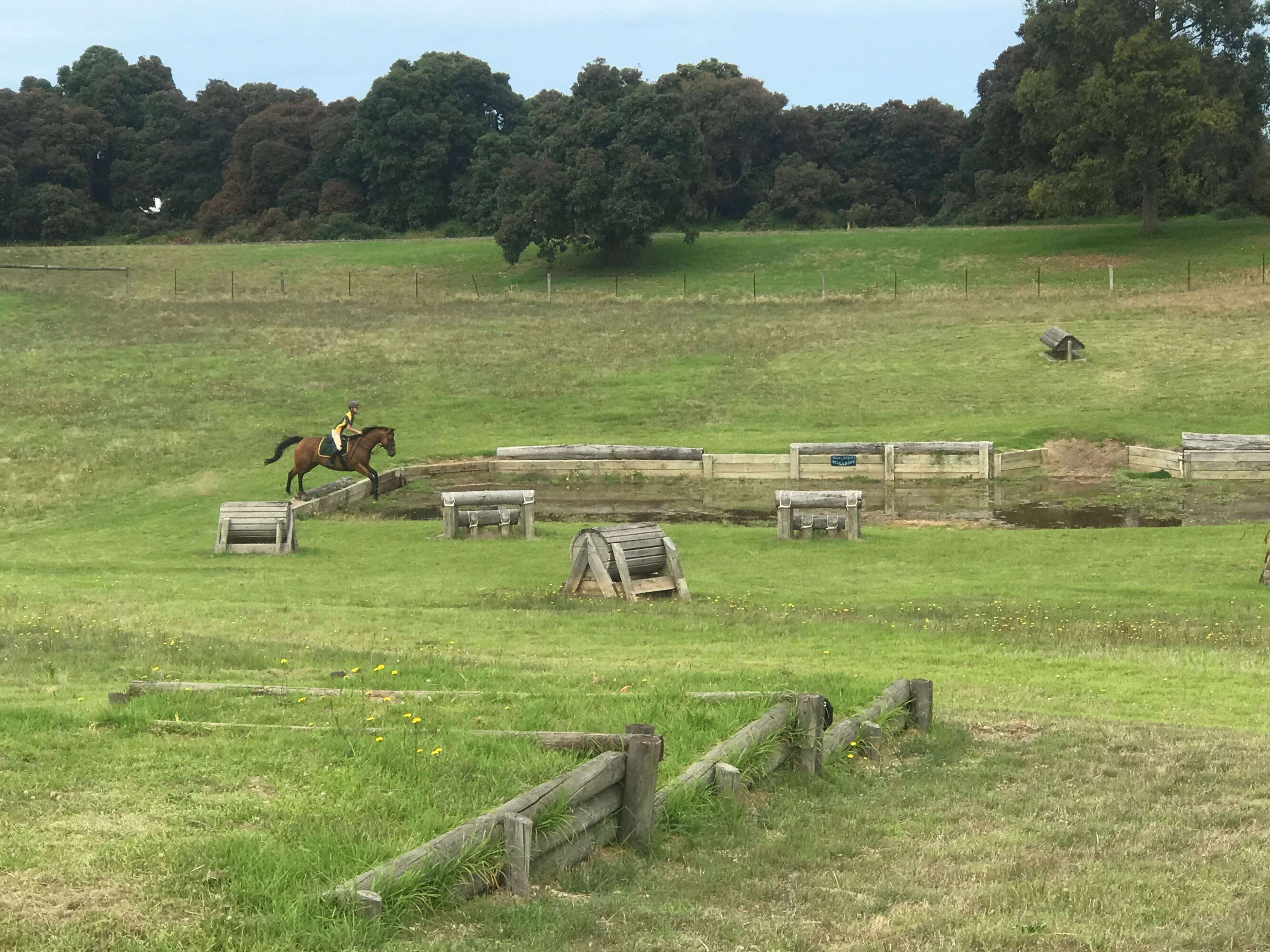 Mount Gambier and District Pony Club Horse Trials 2020 - Accommodation Resorts