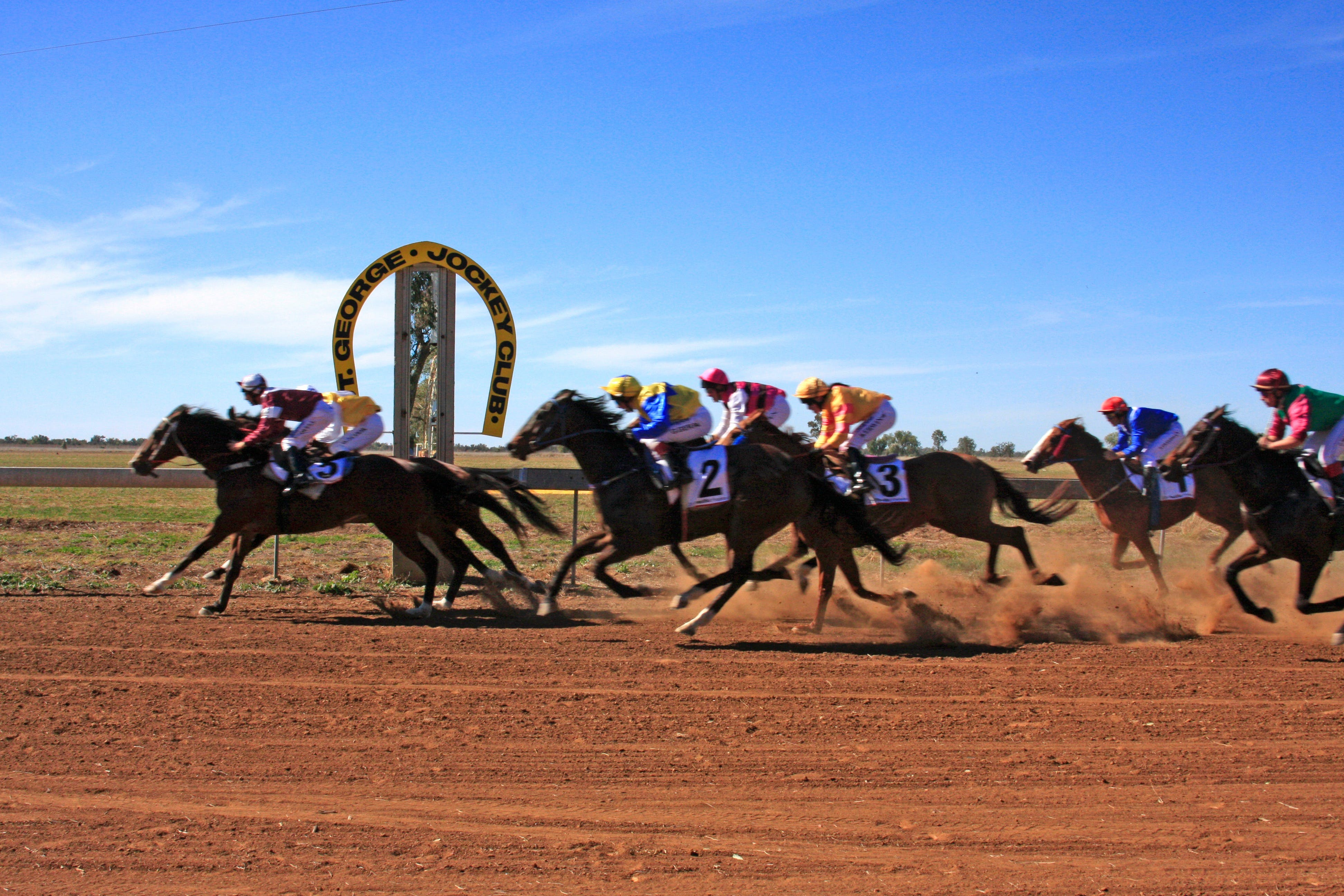St George Cup Race - Accommodation Resorts
